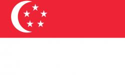 Singapore Removals